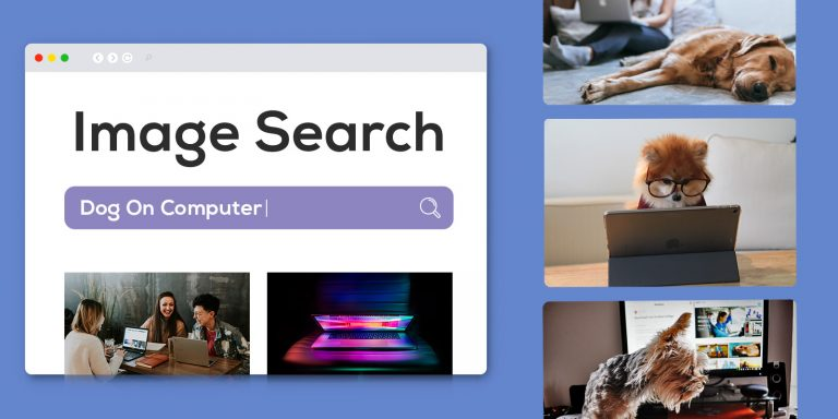 Website Image Search