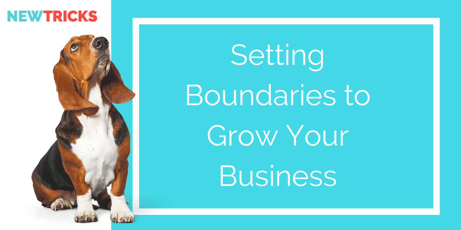 Setting boundaries to grow your business